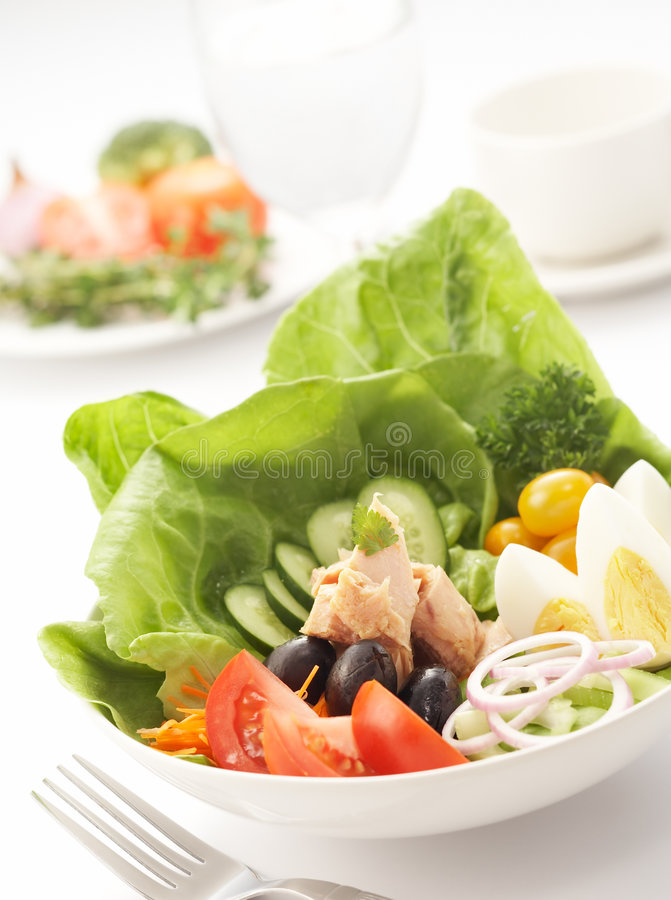 Free Tuna Salad Stock Photography - 3438792