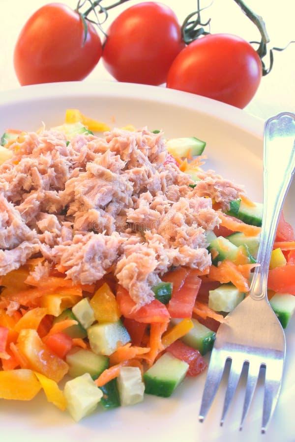 Free Tuna Salad Stock Photography - 4577282