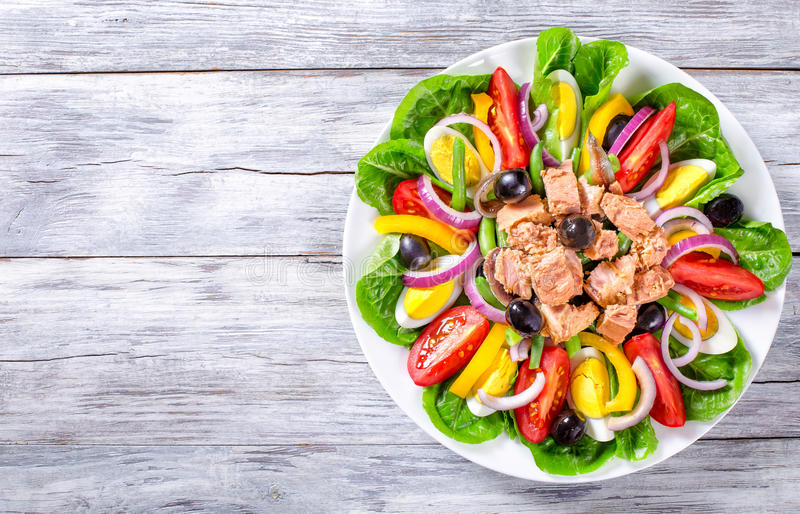 Tuna salad with anchovies, eggs, black olives, tomatoes, oil, basil, garlic, vinegar royalty free stock images