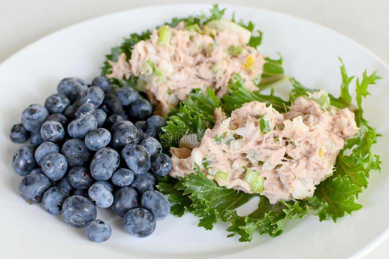 Tuna Salad on Kale Leaves with Blueberries. A healthy meal of tuna fish salad made with celery, onion and dill pickles with mayonnaise on Kale leaves and served royalty free stock photos