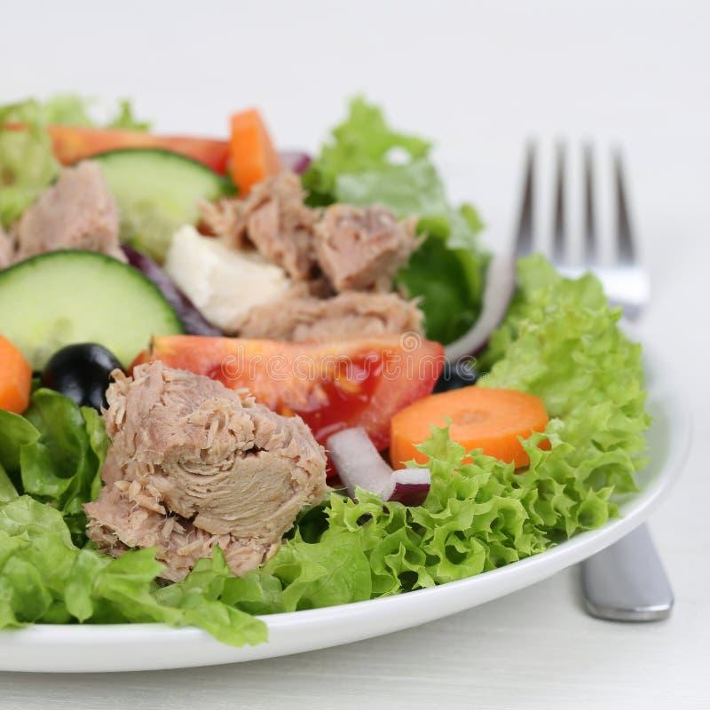 Free Tuna Salad On A Plate Royalty Free Stock Image - 48955366