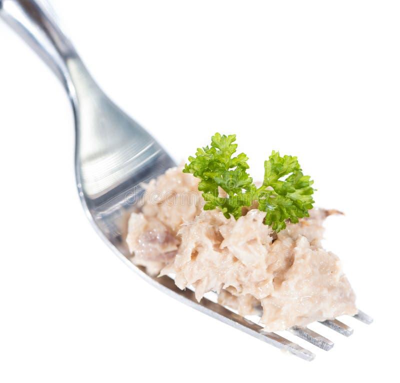 Tuna Salad på en gaffel (som isoleras på vit) arkivfoton