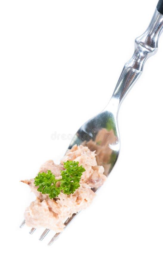 Tuna Salad på en gaffel (som isoleras på vit) royaltyfria foton
