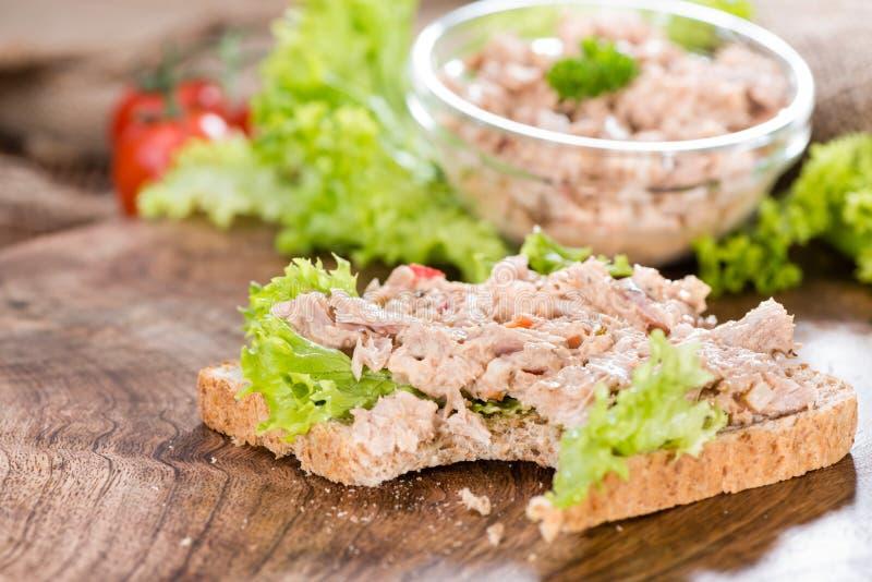 Tuna Salad Sandwich arkivfoto