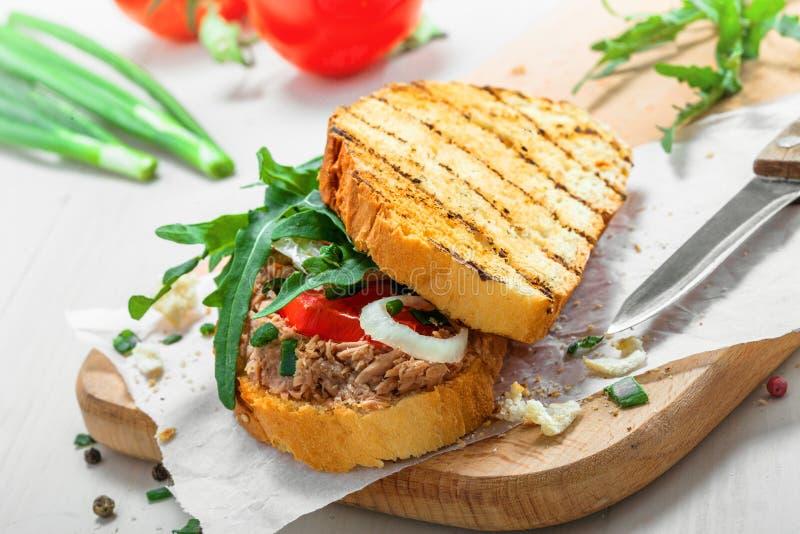 Tuna Salad Sandwich royaltyfri foto