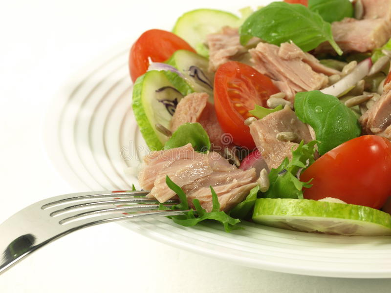 Tuna salad with tomatoes on isolated background stock image