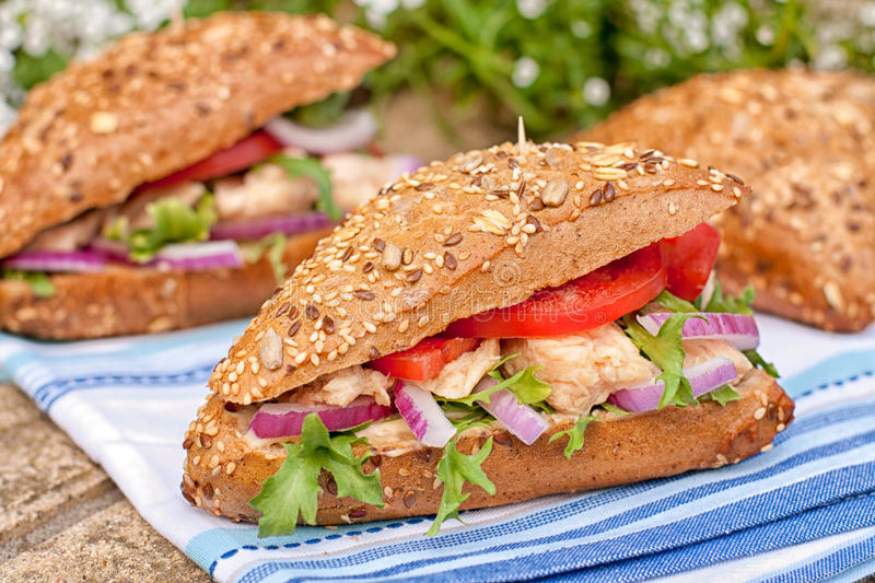 Tuna Sandwich fotos de stock