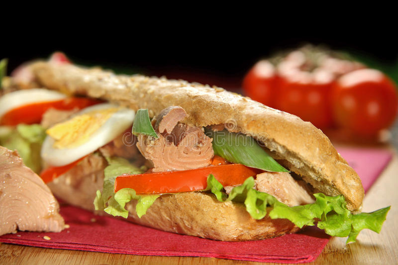 Tuna Sandwich images stock