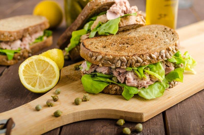 Tuna Sandwich imagen de archivo libre de regalías