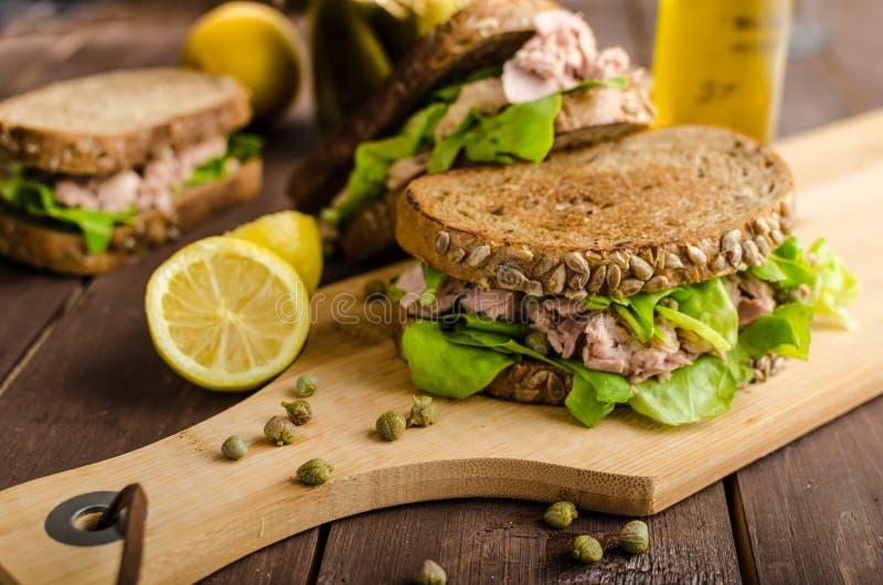 Tuna Sandwich fotografía de archivo libre de regalías