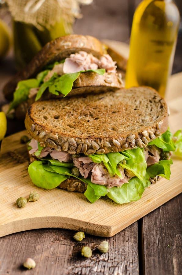 Tuna Sandwich foto de archivo libre de regalías