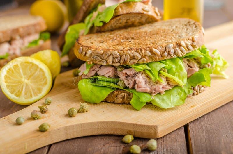 Tuna Sandwich imagenes de archivo