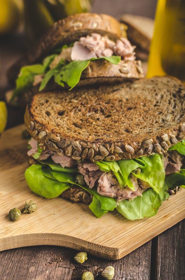 Tuna Sandwich fotografía de archivo