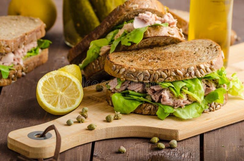 Tuna Sandwich foto de archivo