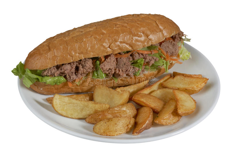 Tuna Sandwich images libres de droits