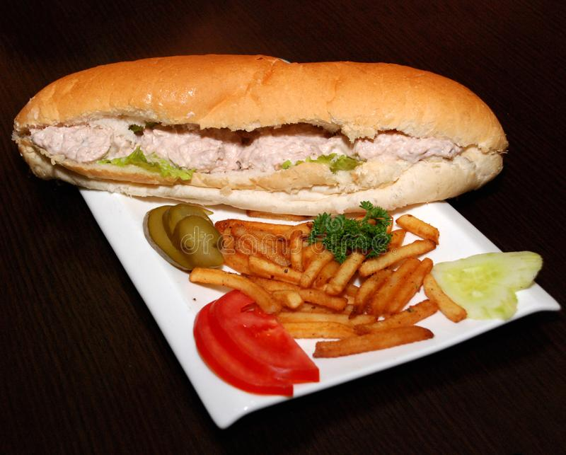 Tuna sandwich with French fries and vegetables royalty free stock photos