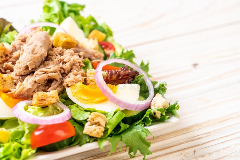 Tuna with vegetable salad and eggs stock photography