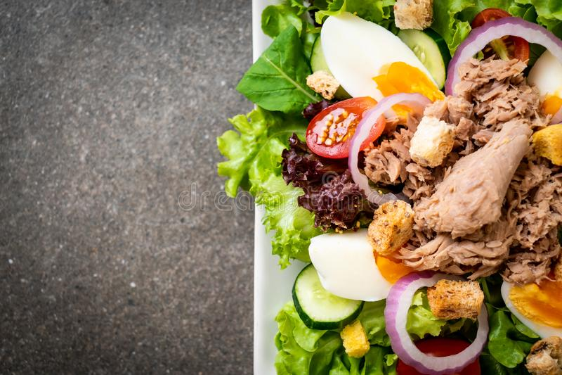 Tuna with vegetable salad and eggs stock images