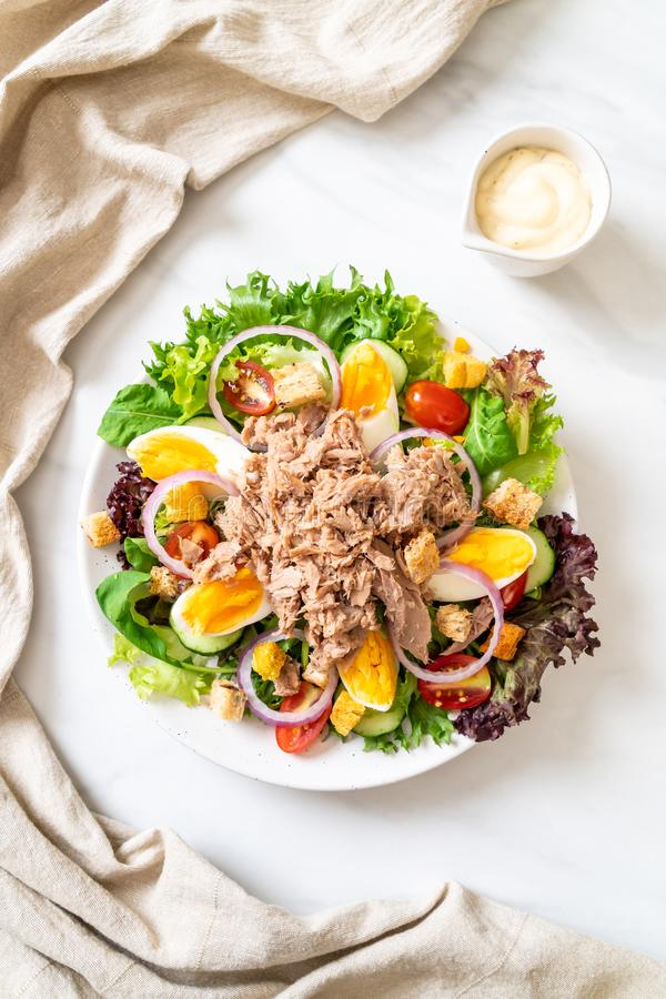 Tuna with vegetable salad and eggs stock image