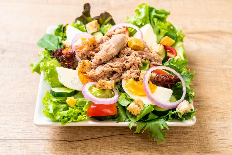 Tuna with vegetable salad and eggs royalty free stock photos