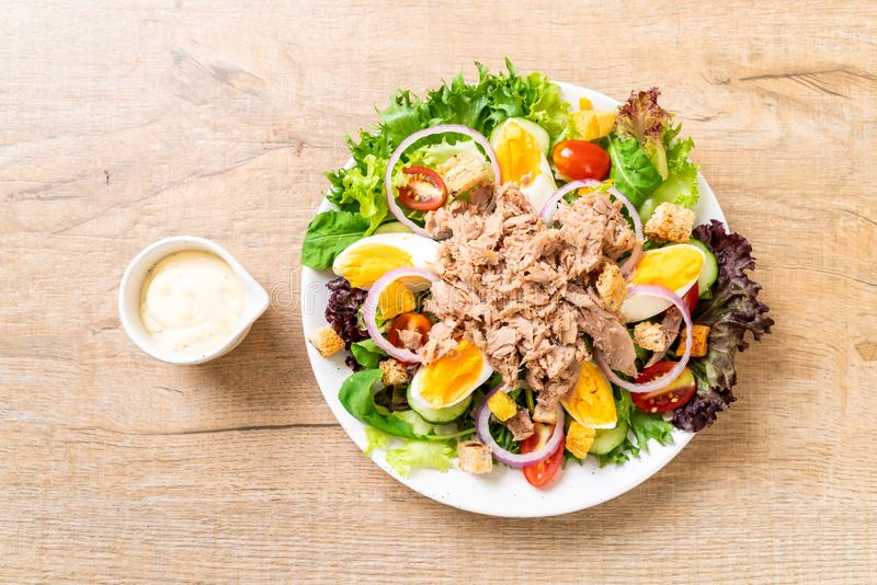 Tuna with vegetable salad and eggs royalty free stock photography