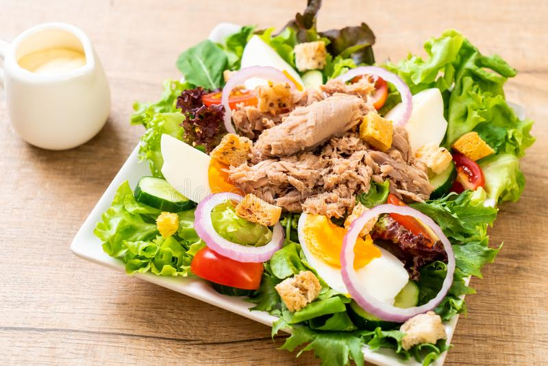 Tuna with vegetable salad and eggs stock photo