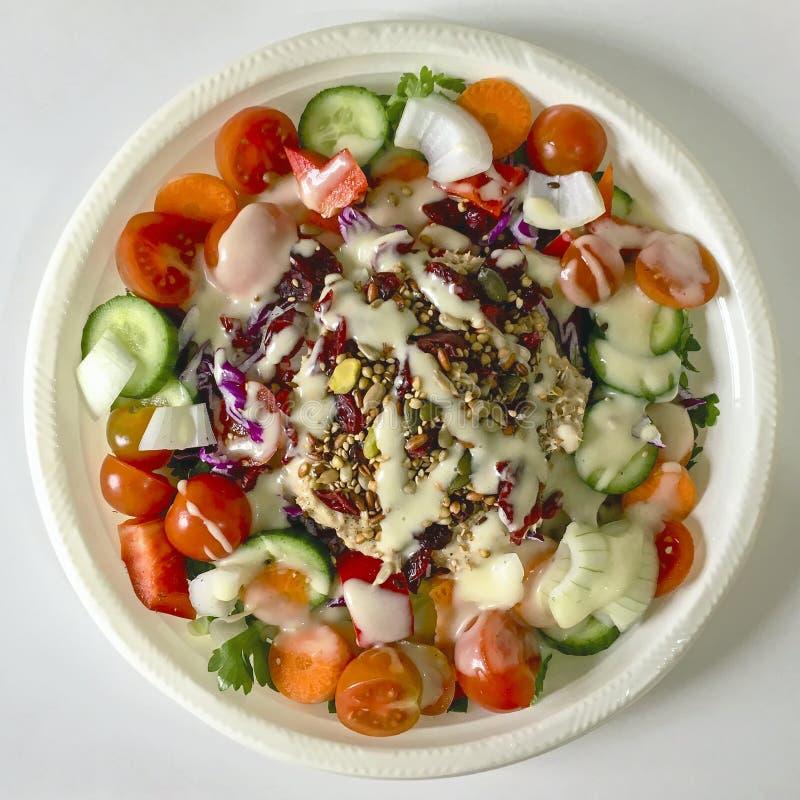 Tuna Vegetable Salad savoureuse d'un grand plat en plastique photos stock