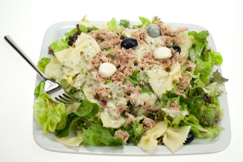 tunafish салата стоковая фотография