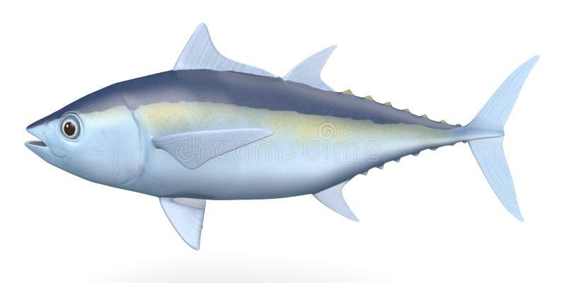 tunafish vektor illustrationer