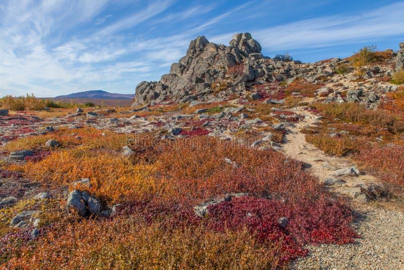 Tundra ártica de Yukon em cores da queda imagens de stock