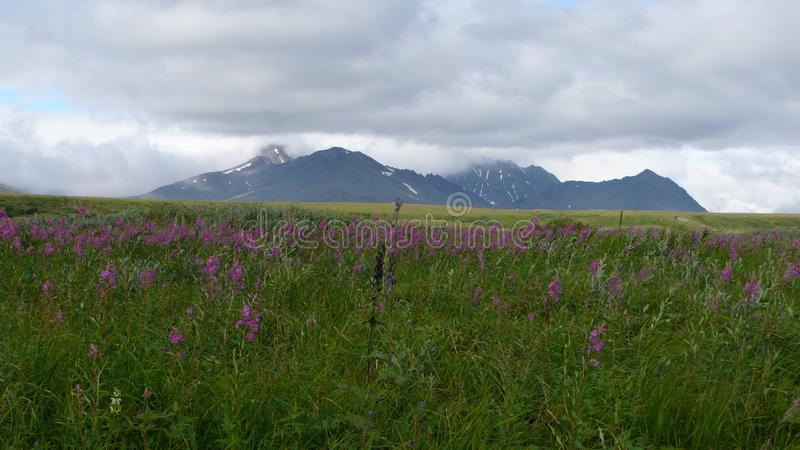 Tundra βουνά και ουρανός το καλοκαίρι στοκ εικόνα