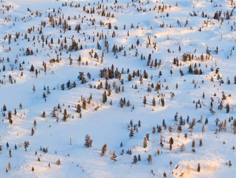 Tundra λόφοι κατά τη διάρκεια της κρύας χειμερινής ημέρας, τοπ άποψη στοκ εικόνες