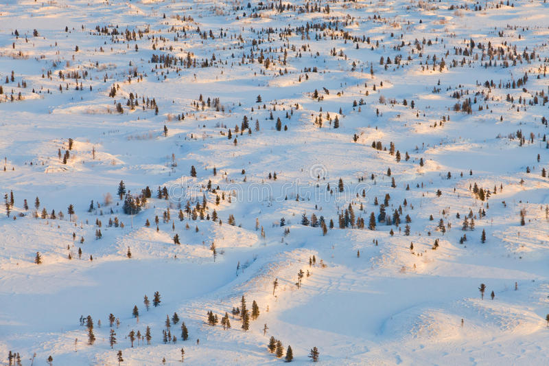 Tundra λόφοι κατά τη διάρκεια της κρύας χειμερινής ημέρας, τοπ άποψη στοκ φωτογραφία με δικαίωμα ελεύθερης χρήσης
