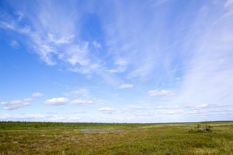 Download Tundra Royalty Free Stock Photography - Image: 22938777