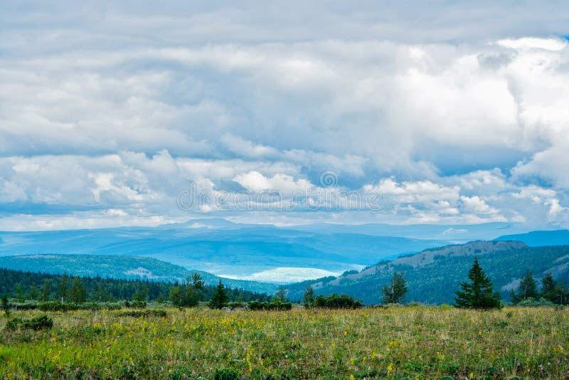 Tundra fotos de stock royalty free