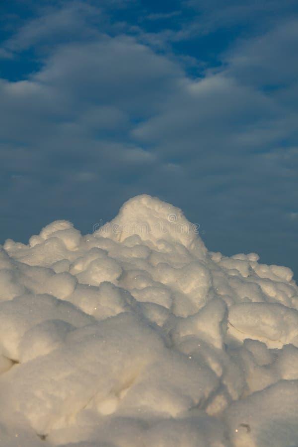 Tundra lizenzfreie stockfotografie