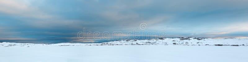 tundra imagenes de archivo