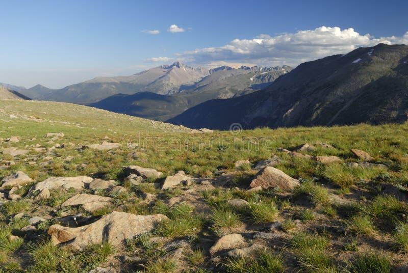 Tundra alpina in montagne rocciose del Colorado fotografia stock
