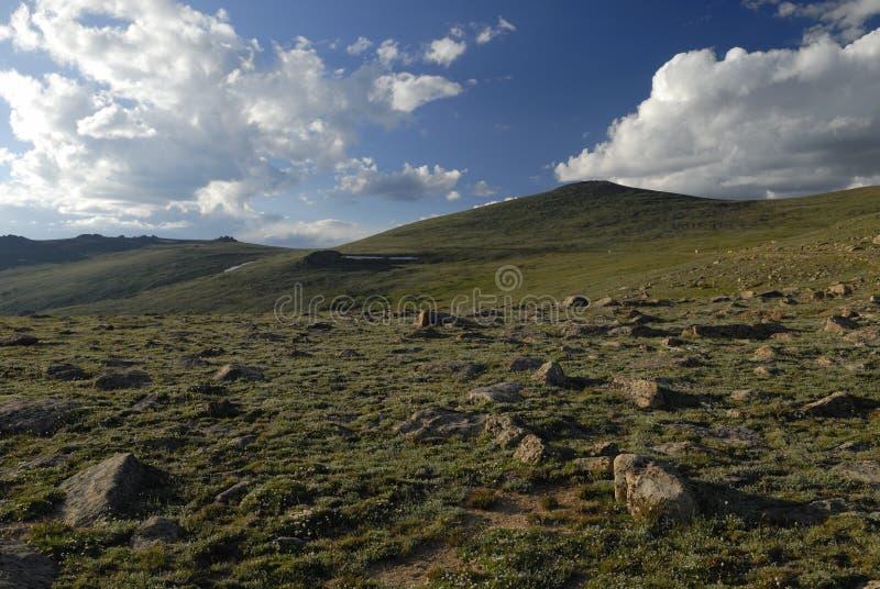 Tundra alpina in montagne rocciose del Colorado fotografie stock libere da diritti