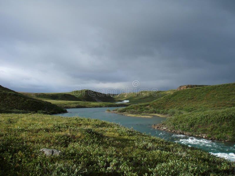 Tundra artica fotografia stock