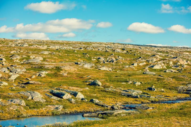 Tundra blisko Północnego przylądka w Norwegia obraz royalty free