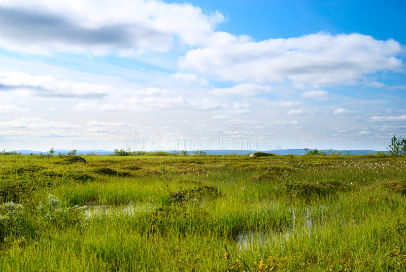 Tundra del nord della montagna fotografie stock