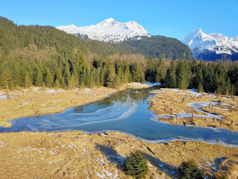 Tundra do Alasca congelada foto de stock royalty free