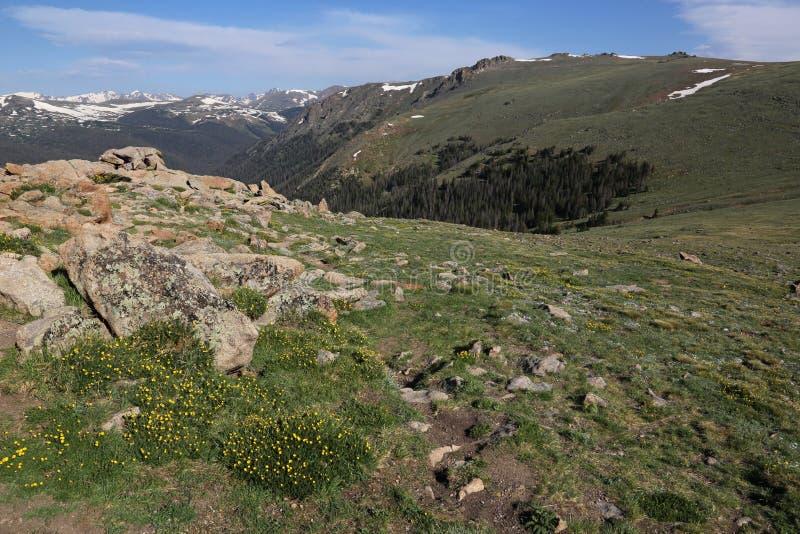 Tundra e valle alpine fotografie stock