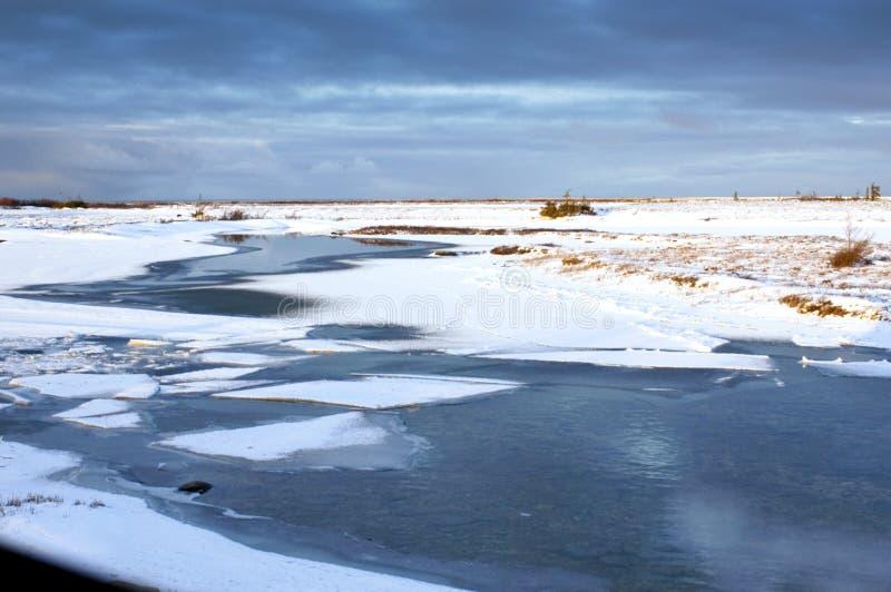Tundra en Churchill fotos de archivo libres de regalías