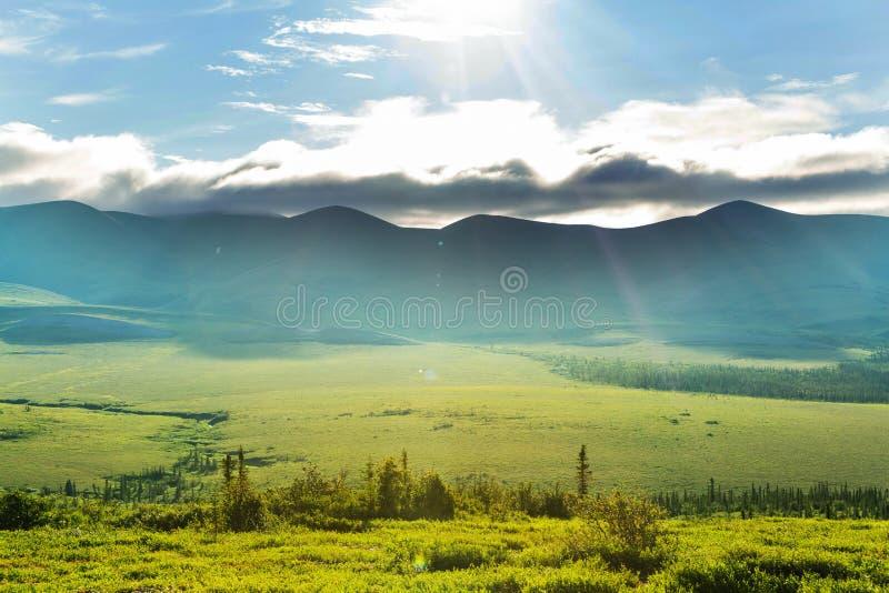 Tundra krajobraz zdjęcie royalty free