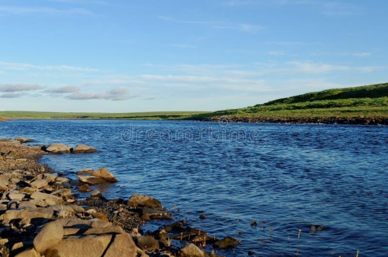 Tundra krajobraz zdjęcia stock