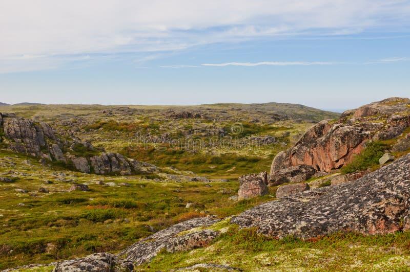 Tundra krajobraz Kola półwysep, Murmansk region, Rosja fotografia stock