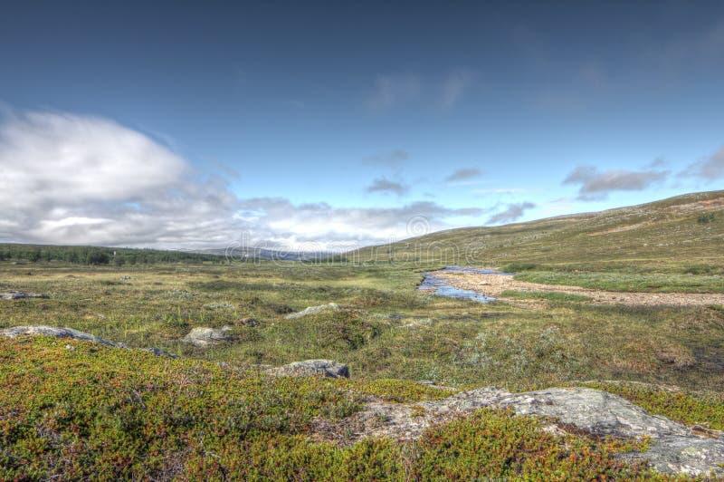 Tundra-Landschaft stockfotos