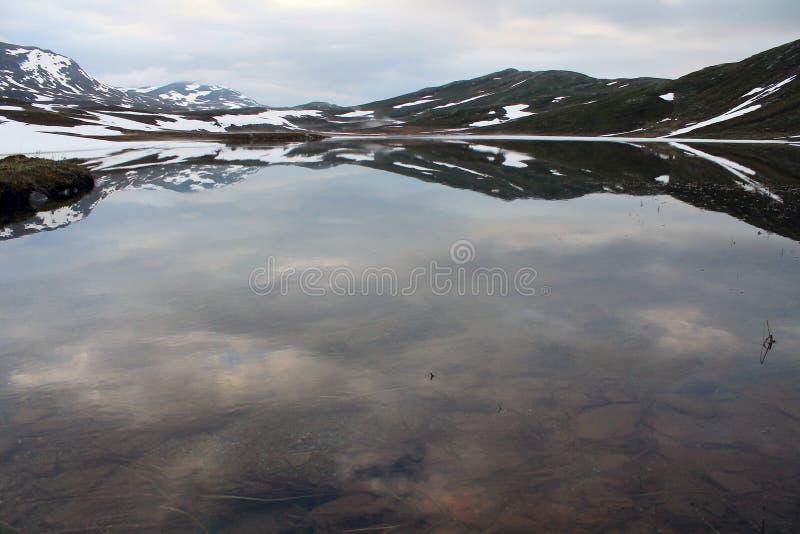 Tundra reflection stock image